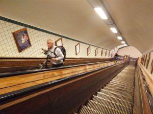 escaleras Scheldt esconde un secreto… - escaleras 300x225 - Scheldt esconde un secreto…