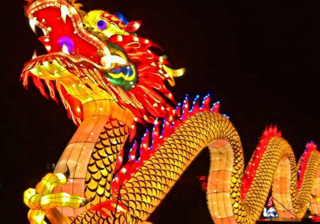 fotograma-18-01-2017-10-33-33 China Lights Zoo — OFF — - Fotograma 18 01 2017 10 33 33 1024x717 - China Lights Zoo — OFF —