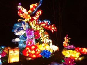 img_7613 China Lights Zoo — OFF — - IMG 7613 300x224 - China Lights Zoo — OFF —