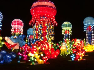 img_7640 China Lights Zoo — OFF — - IMG 7640 300x224 - China Lights Zoo — OFF —