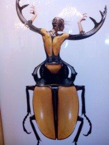 insecto-vestido-mujer