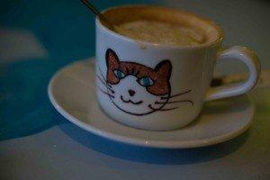 Chat Touille-12 Le Chat Touille: El café donde los gatos son los protagonistas. - Chat Touille 12 300x200 - Le Chat Touille: El café donde los gatos son los protagonistas.