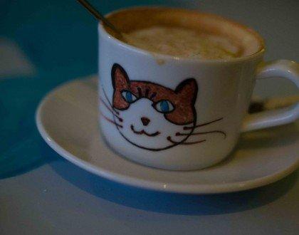 Le Chat Touille: El café donde los gatos son los protagonistas.