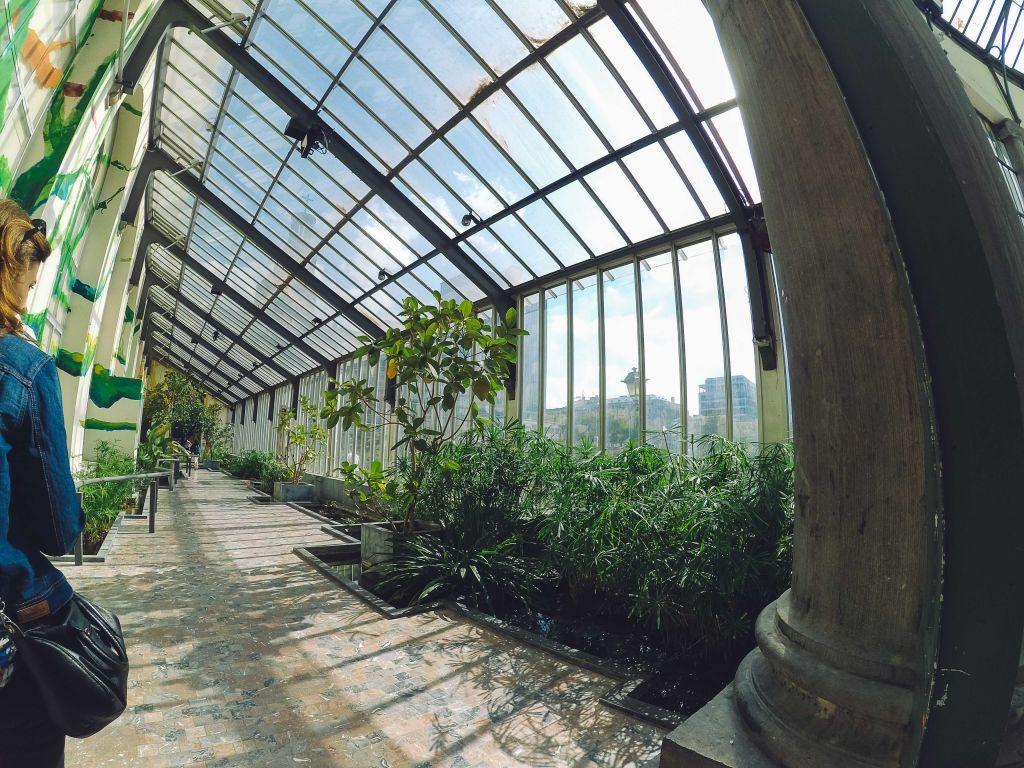 ¡El Jardín Botánico es algo más que un parque! - Turismo ...