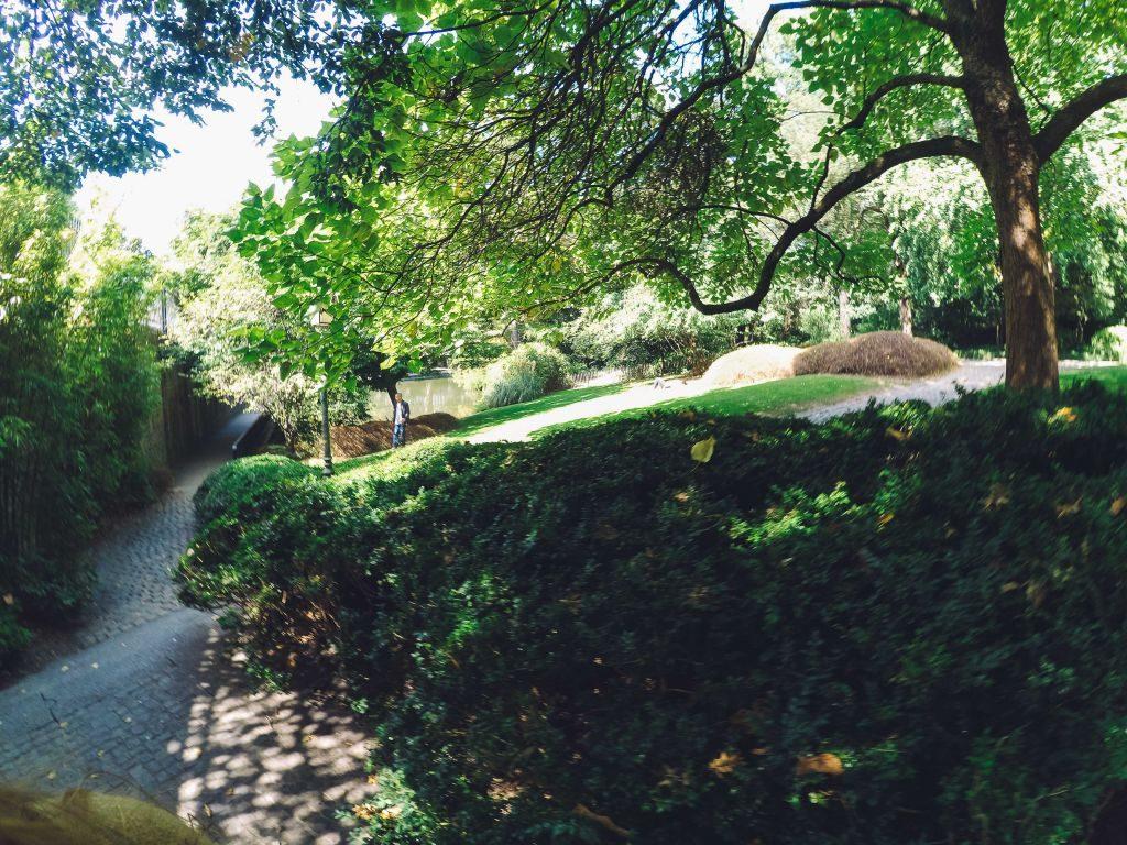 botanique-5 ¡El Jardín Botánico es algo más que un parque! - botanique 5 1024x768 - ¡El Jardín Botánico es algo más que un parque!
