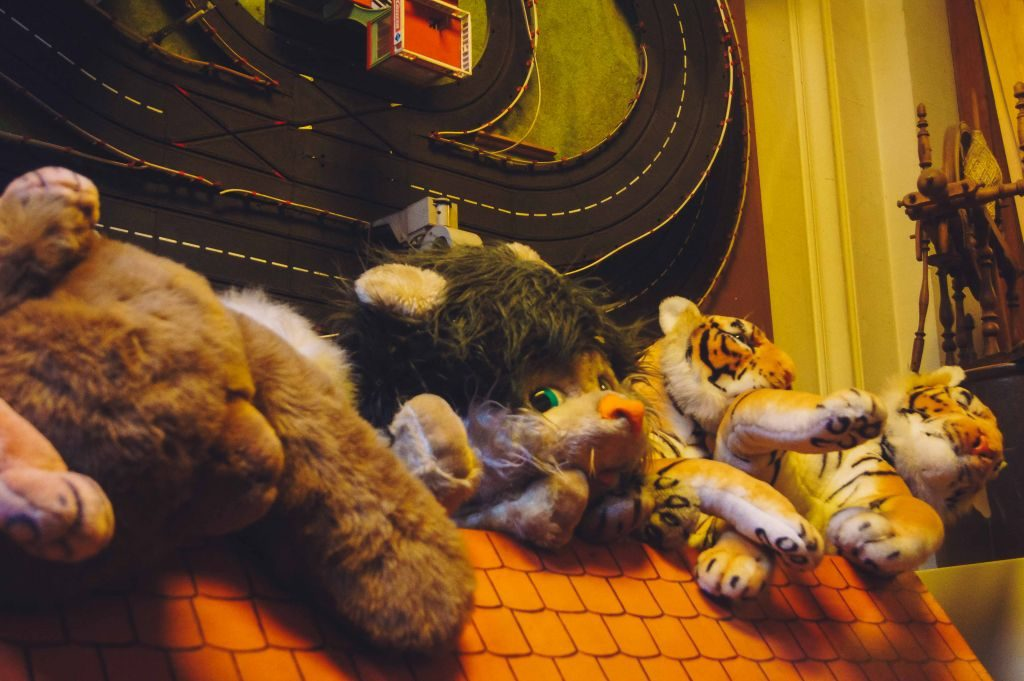 museo juguetes-2 ¡Nunca se es mayor para el Museo del Juguete! - museo juguetes 2 1024x681 - ¡Nunca se es mayor para el Museo del Juguete!