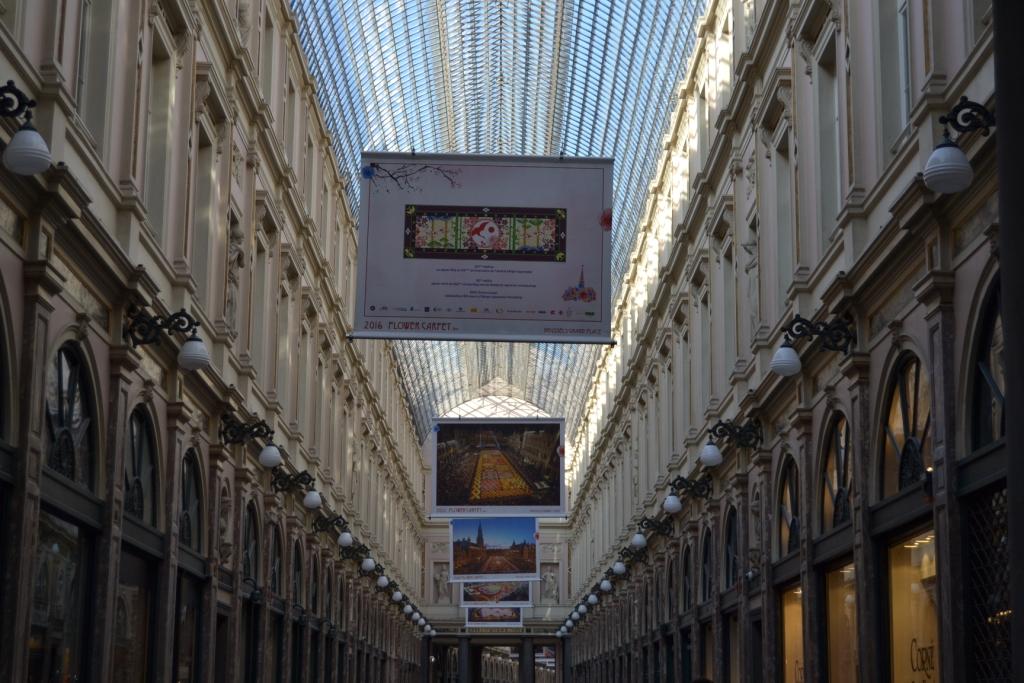 R Las flores cubren la Grand-Place, el tapiz floral bruselense - DSC 0251 - Las flores cubren la Grand-Place, el tapiz floral bruselense