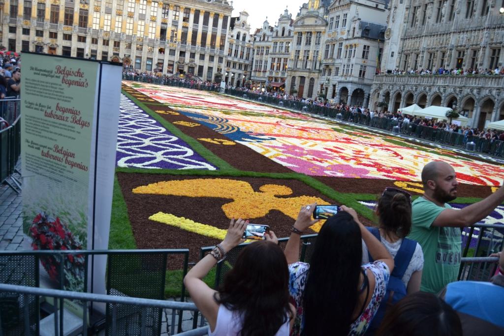 R Las flores cubren la Grand-Place, el tapiz floral bruselense - DSC 0403 - Las flores cubren la Grand-Place, el tapiz floral bruselense