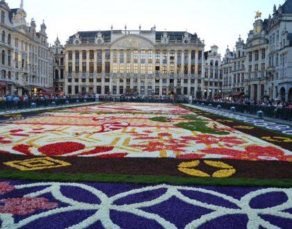 Las flores cubren la Grand-Place, el tapiz floral bruselense