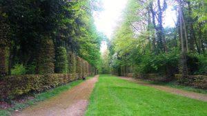 parque nacional de tervuren, una cita obligatoria con la naturaleza - Alrededores del museo de   frica Central 300x169 - Parque Nacional de Tervuren, una cita obligatoria con la naturaleza