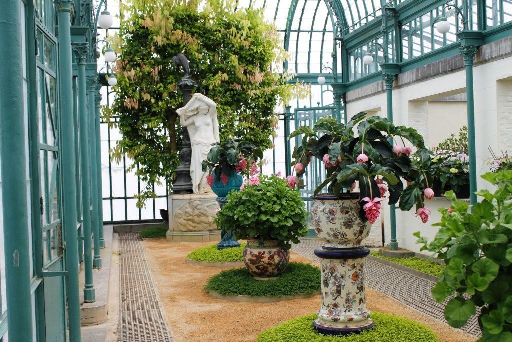 """celebra la llegada de la primavera en """"les serres royales de laeken"""" - Escultura y flores 1024x683 - Celebra la llegada de la primavera en """"les Serres Royales de Laeken"""""""