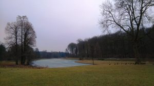 parque nacional de tervuren, una cita obligatoria con la naturaleza - Lago congelado en Tervuren 300x169 - Parque Nacional de Tervuren, una cita obligatoria con la naturaleza
