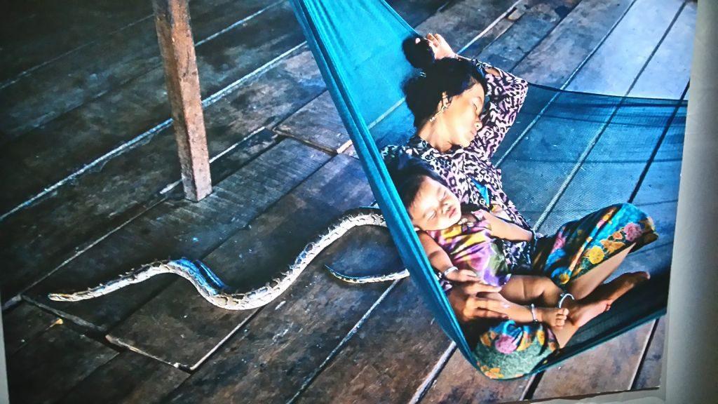 el mundo a través de la fotografía: steve mccurry - Serpiente y hamaca 1024x576 - El mundo a través de la fotografía: Steve McCurry