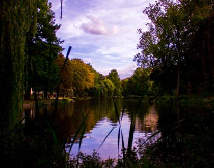 Dos parques, dos mundos