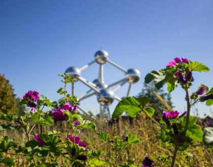 El Atomium: una nueva perspectiva