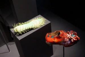 Exposición Foot Print - DSC03901 300x200 - Exposición Foot Print