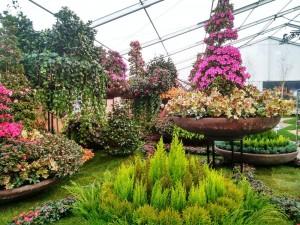 Floralias Gent (2)