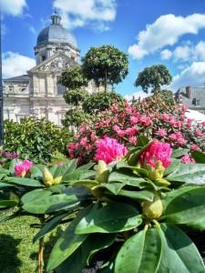 Floralias Gent (7)