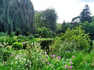 Jardín Botánico (2) El rincón verde de Gante - Jard  n Bot  nico 2 300x225 - El rincón verde de Gante
