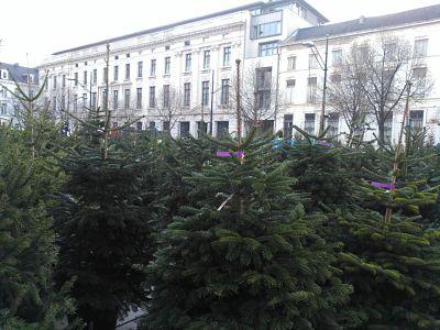 img_20161206_102718_opt ¿La Navidad más romántica? En Gante - IMG 20161206 102718 opt - ¿La Navidad más romántica? En Gante
