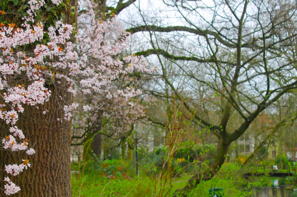 5 fotos para esta primavera - Captura de pantalla 2017 03 29 a las 18 - 5 fotos para esta primavera