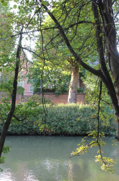los jardines secretos de gante - Captura de pantalla 2017 05 07 a las 19 - Los jardines secretos de Gante
