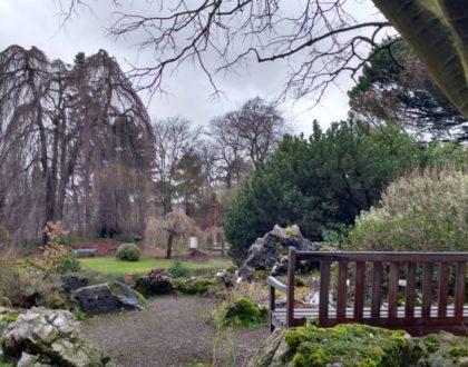 El Jardín botánico de Gante