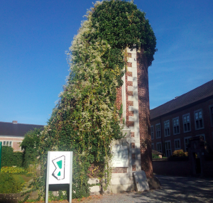 captura-de-pantalla-2016-09-25-a-las-19-27-43 Un beguinaje en Hasselt - Captura de pantalla 2016 09 25 a las 19 - Un beguinaje en Hasselt