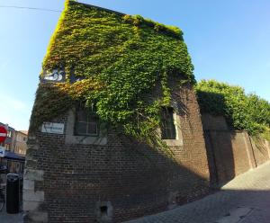 captura-de-pantalla-2016-09-25-a-las-19-40-09 Un beguinaje en Hasselt - Captura de pantalla 2016 09 25 a las 19 - Un beguinaje en Hasselt