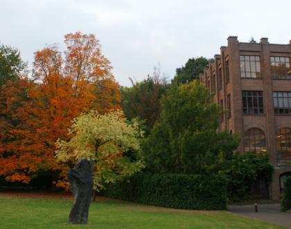 Arenberg: Naturaleza universitaria