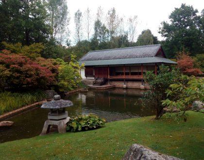 Un pedacito de Japón en Bélgica