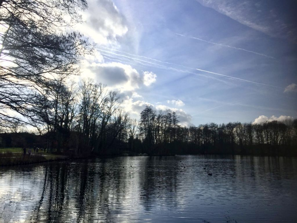 Parques para pasear y desconectar