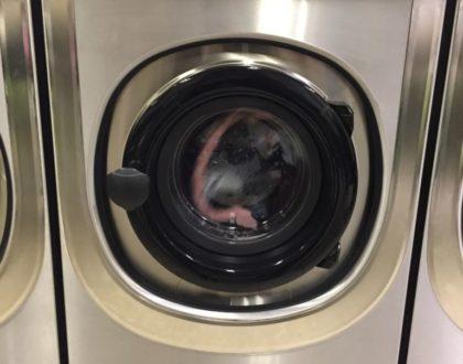 Excursión a la lavandería