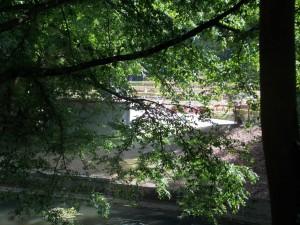 Árbol con un ambiente tranquilo de fondo Folk en los parques de Bruselas - DSCN5861 300x225 - Folk en los parques de Bruselas