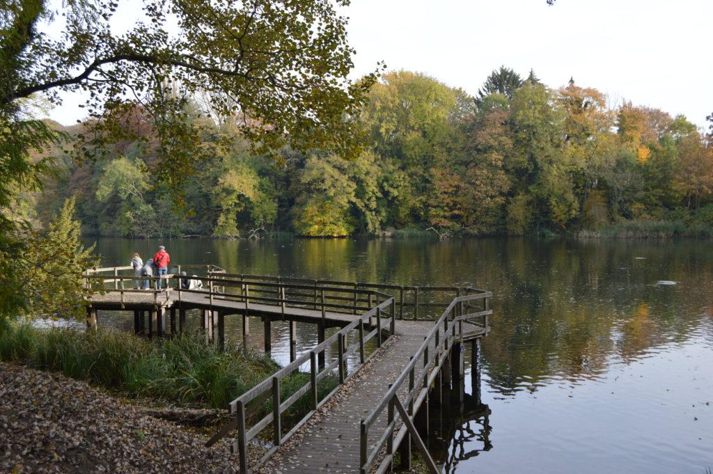 Las orillas del lago del Parc de Tervuren son el rincón perfecto para leer un libro, relajarse y descansar.