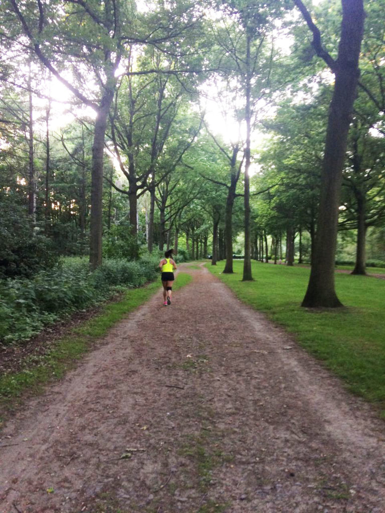 Camino Árboles act like a local (iii): running en el pulmón de amberes - 1 768x1024 - Act like a local (III): Running en el pulmón de Amberes